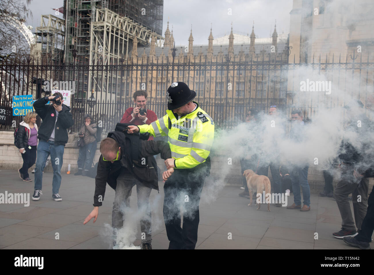London, UK. 23 March, 2019. A protester, outside the House of Parliament, Westminster, ignites a firework and he is taken away by the police. Credit: Santo Basone/Alamy Live News Stock Photo