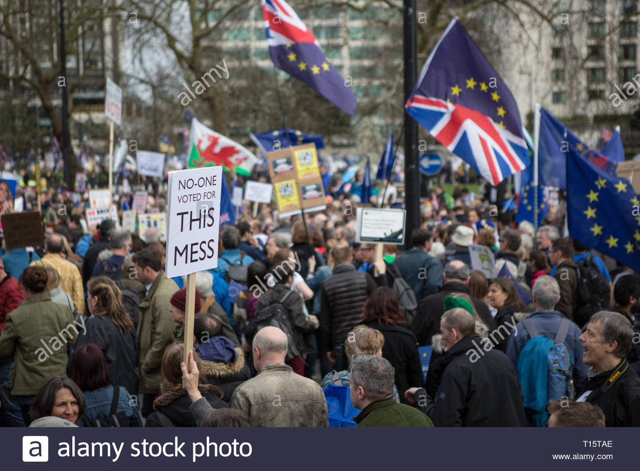 London, UK. 23rd Mar 2019. The People's Vote March For The Future on 23rd of March 2019 in London, United Kingdom. More than 1000,000 people marched to Westminster Parliament to demand their democratic voice to be heard in a landmark demonstration billed as the most important protest of a generation. As the date of the UK's Brexit from the European Union, the protesters gathered in their tens of thousands to make political leaders take notice and to give the British public a vote on the final Brexit deal. Credit: Awakening/Alamy Live News Stock Photo