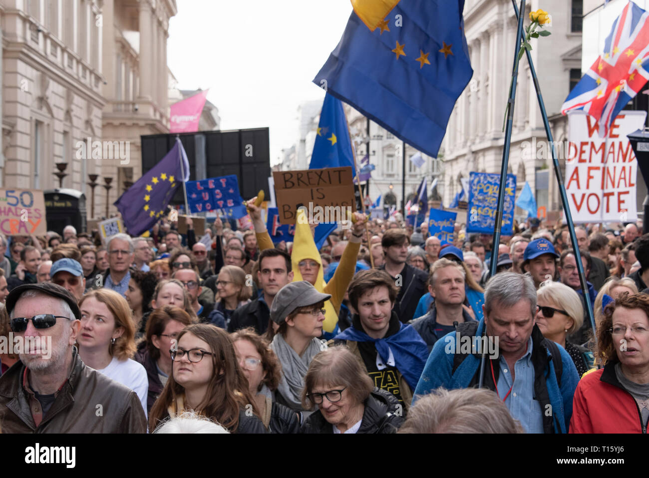 London, UK. 23rd Mar, 2019. Peoples Vote March, Crowd detail and banners as taken from the perspective of a protester. Remain banners, second referendum. Credit: Tony Pincham/Alamy Live News - Stock Image