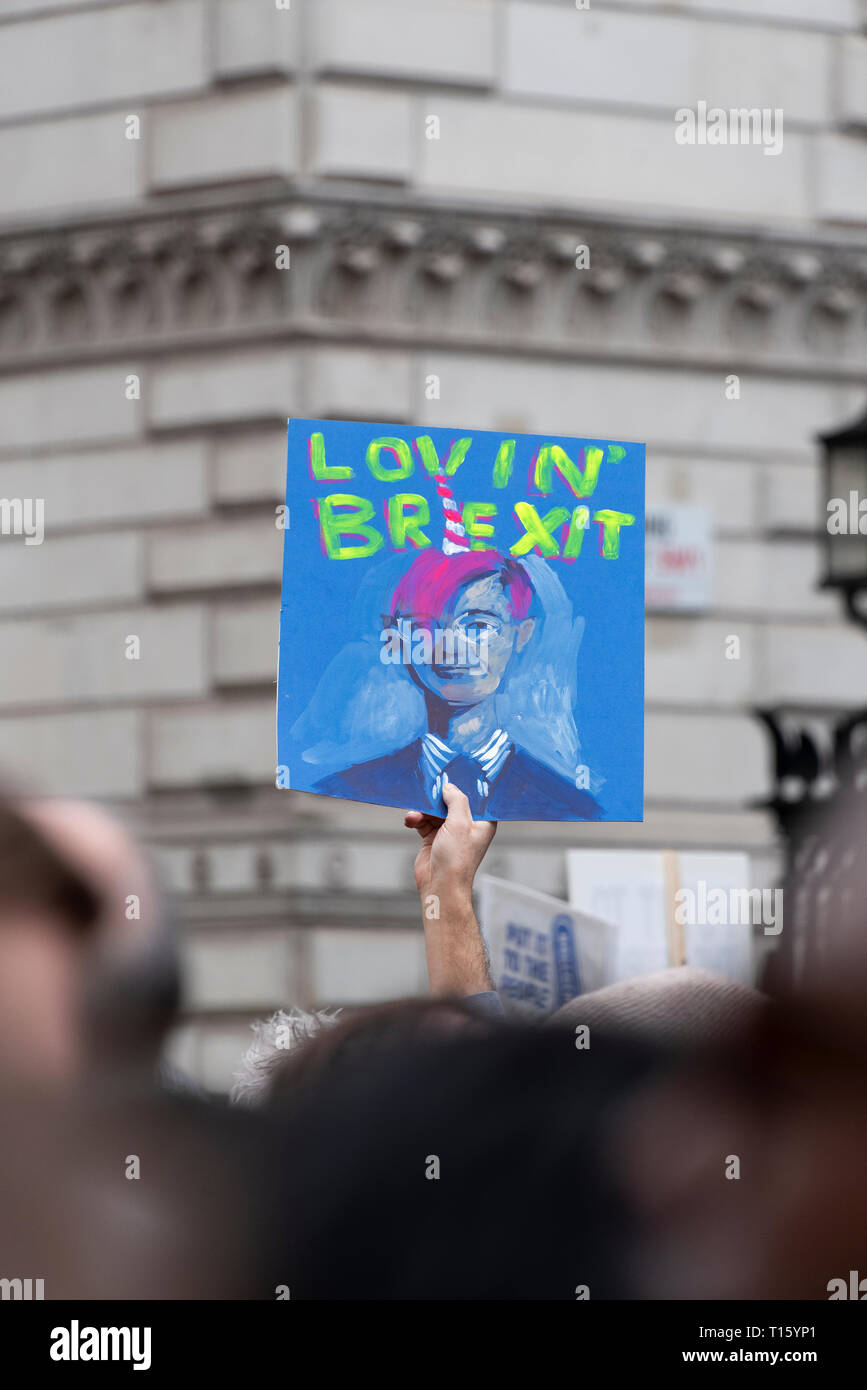 London, UK. 23rd Mar, 2019. Peoples Vote March, Arty Mogg placard Downing Street. Crowd detail and banners as taken from the perspective of a protester. Remain banners, second referendum. Credit: Tony Pincham/Alamy Live News Stock Photo