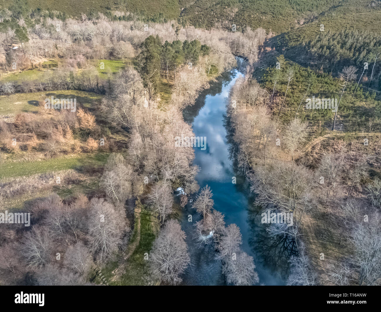 Aerial view of drone, artificial lake and dense forest on the banks, in Portugal - Stock Image