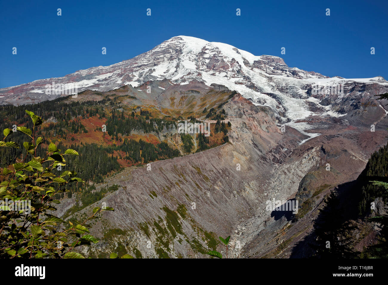 WASHINGTON - View up the debris covered terminus of the Nisqually Glacier from a viewpoint along the Nisqually Vista Trail in Mount Rainier NP. - Stock Image