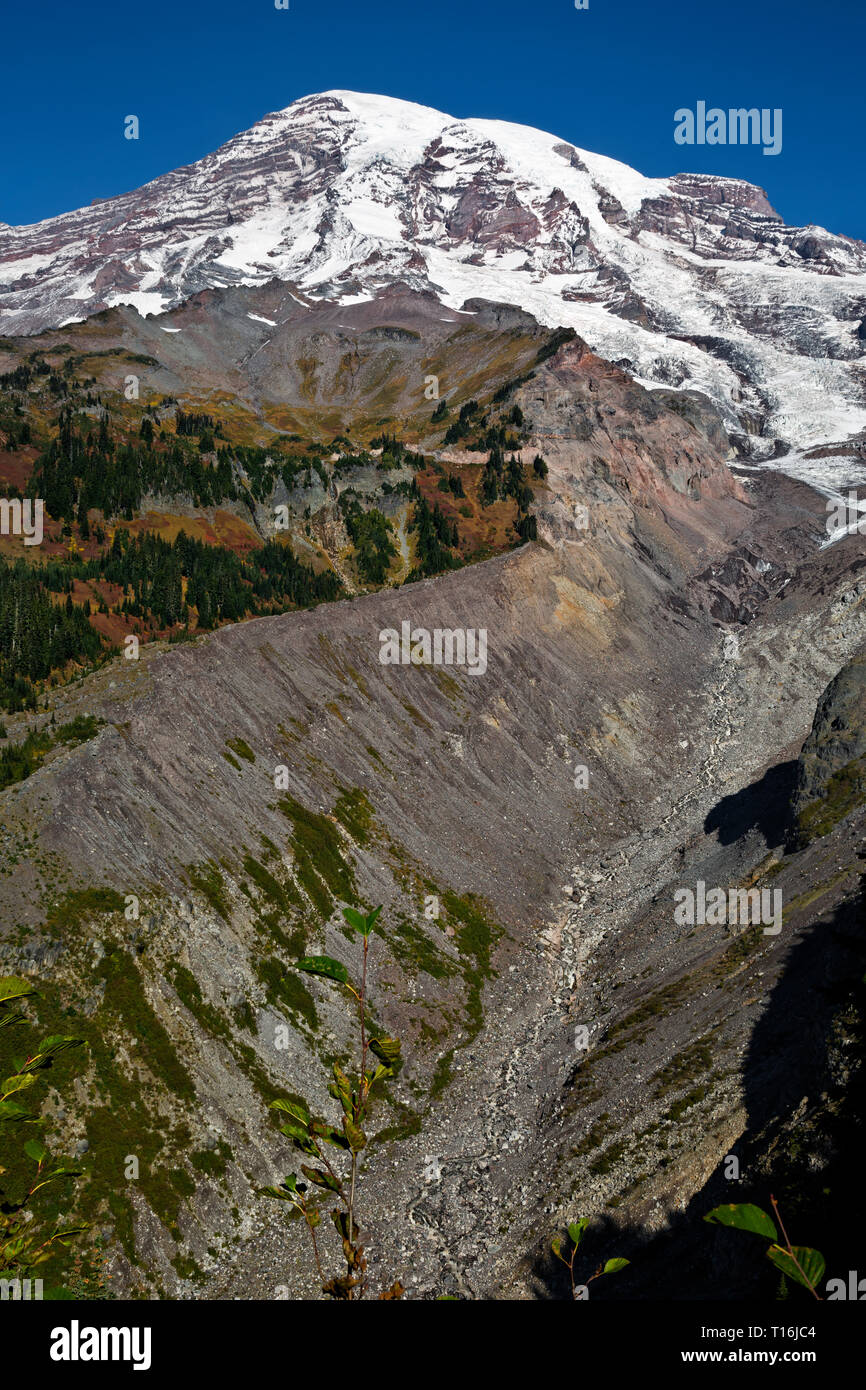 WA16005-00...WASHINGTON - View of debris covered terminus of the Nisqually Glacier from a viewpoint along the Nisqually Vista Trail in Mt Rainier NP. - Stock Image
