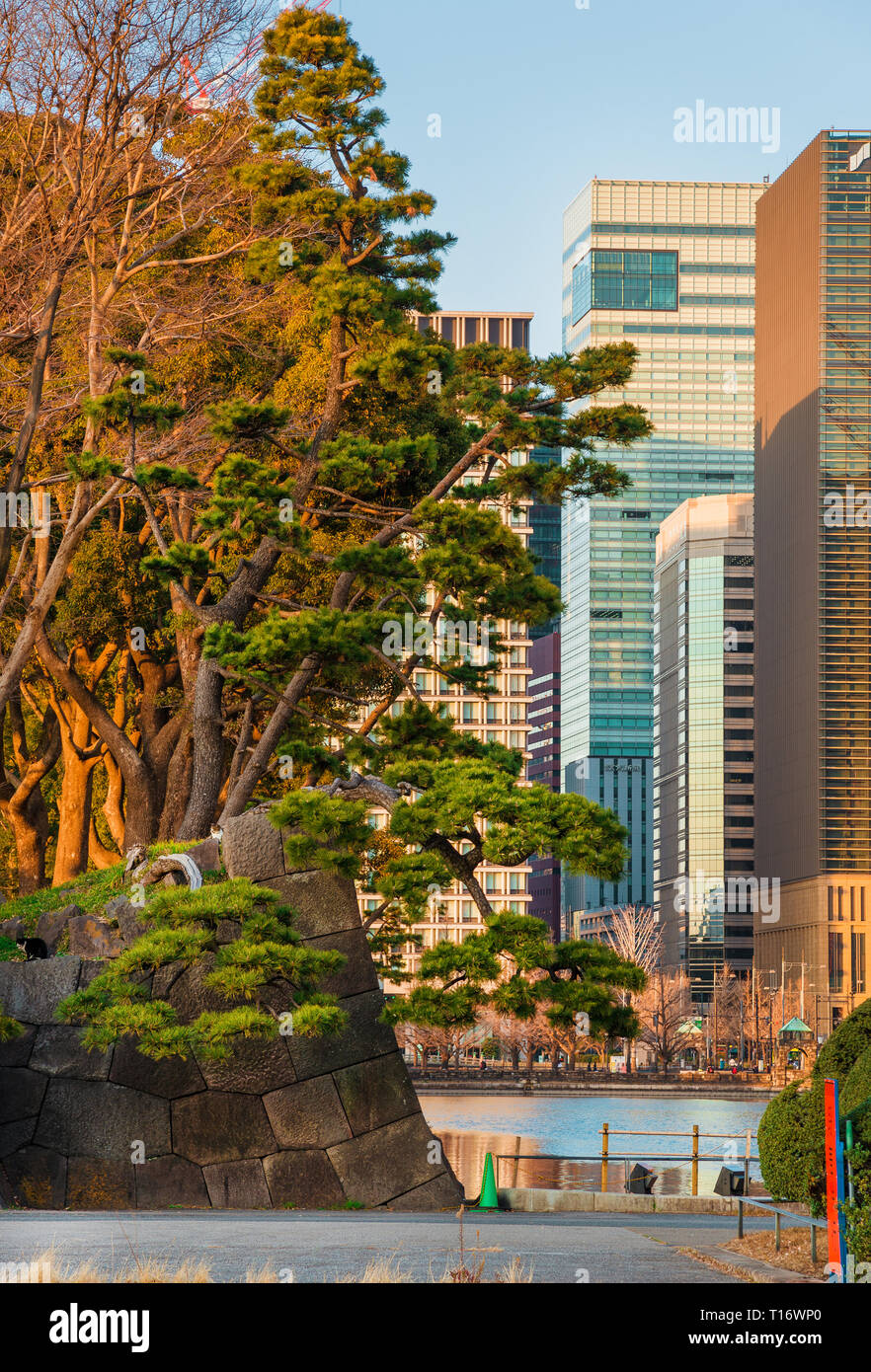 Japan between tradition and modernity. City center modern buildings in front of Tokyo Castle old walls and moats - Stock Image