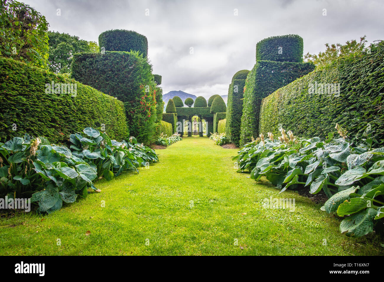 Central perspective on the oddly shaped yews and other shrubs in the garden of Plas Brondanw, Gwynedd, North Wales, United Kingdom - Stock Image