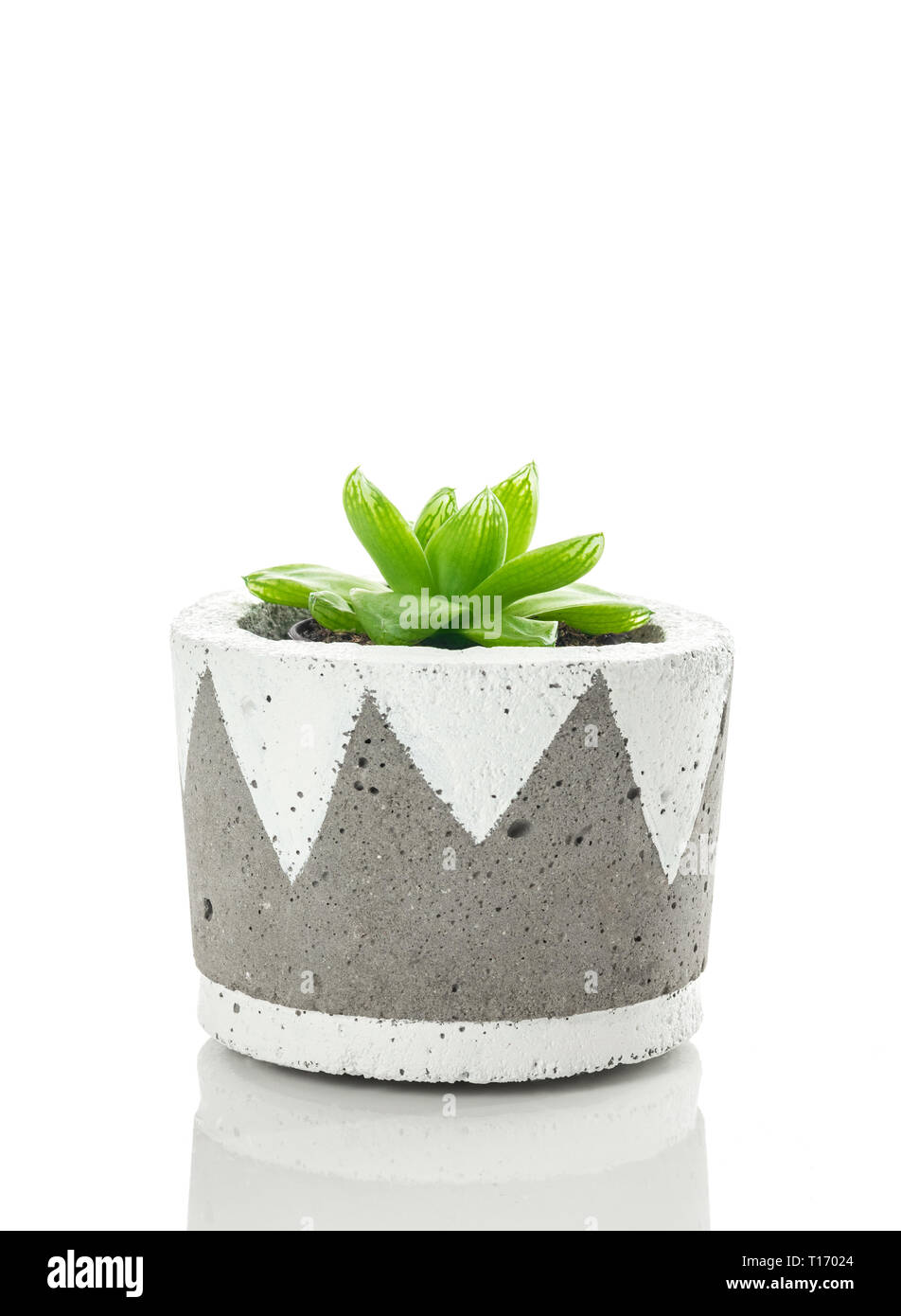 Hand Painted Plant Pot High Resolution Stock Photography And Images Alamy
