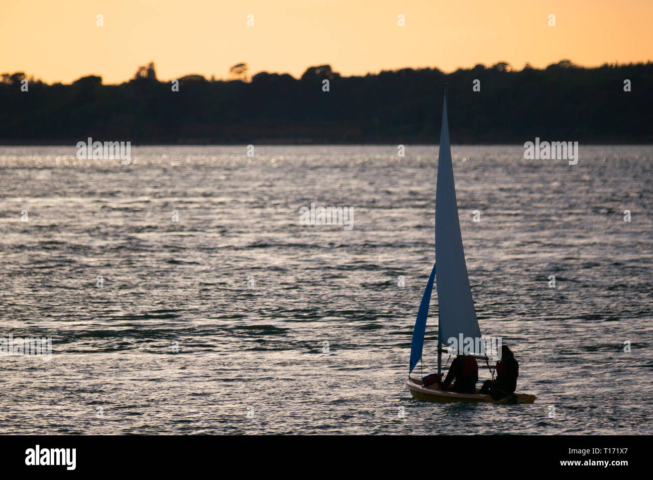 small,sailing,dinghy,racing,race,the,Solent,Cowes,Isle of Wight,England,UK, - Stock Image