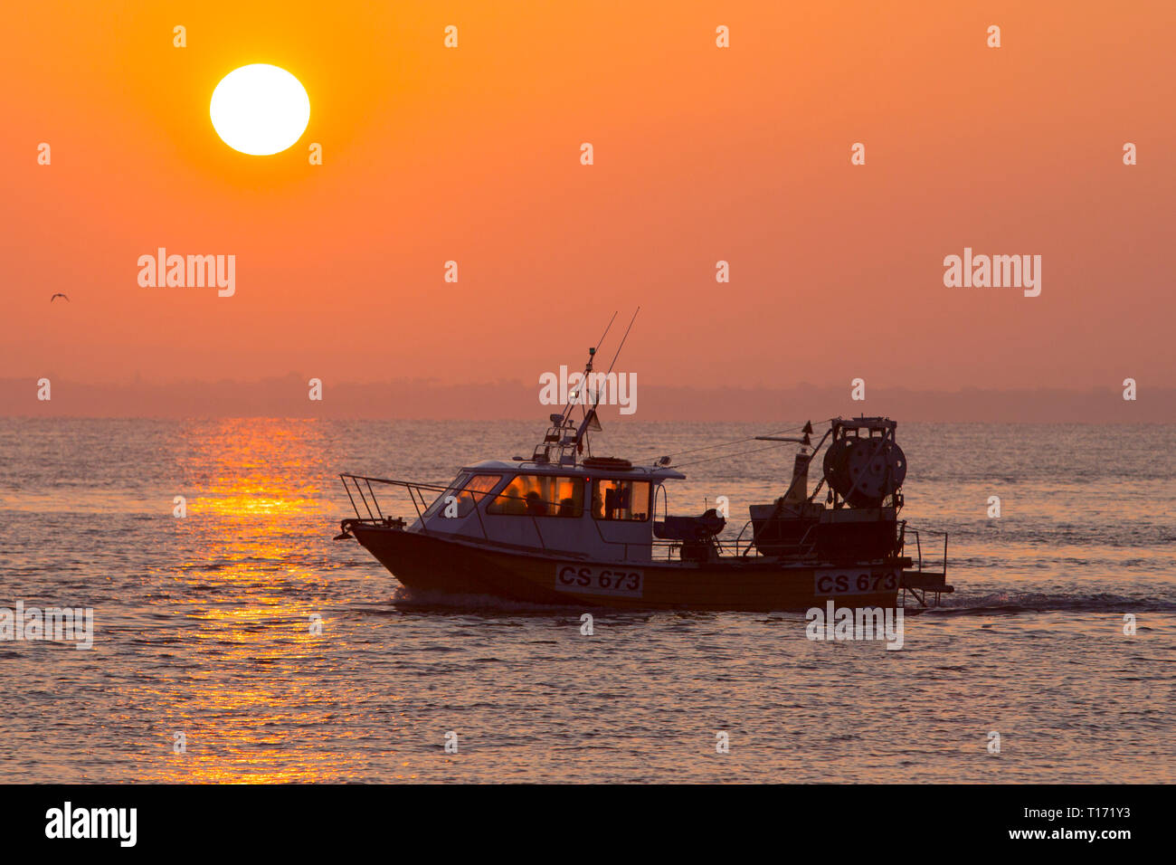 Fishing,boat,lobsters,crabs,oysters,pots,long,line,trawler,sunset,sunrise,The Solent,Cowes,Isle of Wight,England,UK, - Stock Image