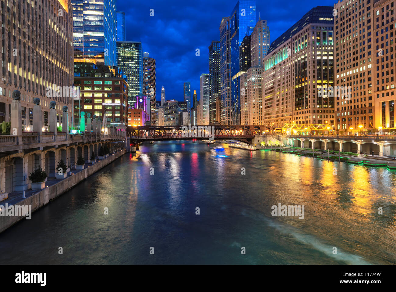 Night view of Chicago city in Chicago, Illinois - Stock Image