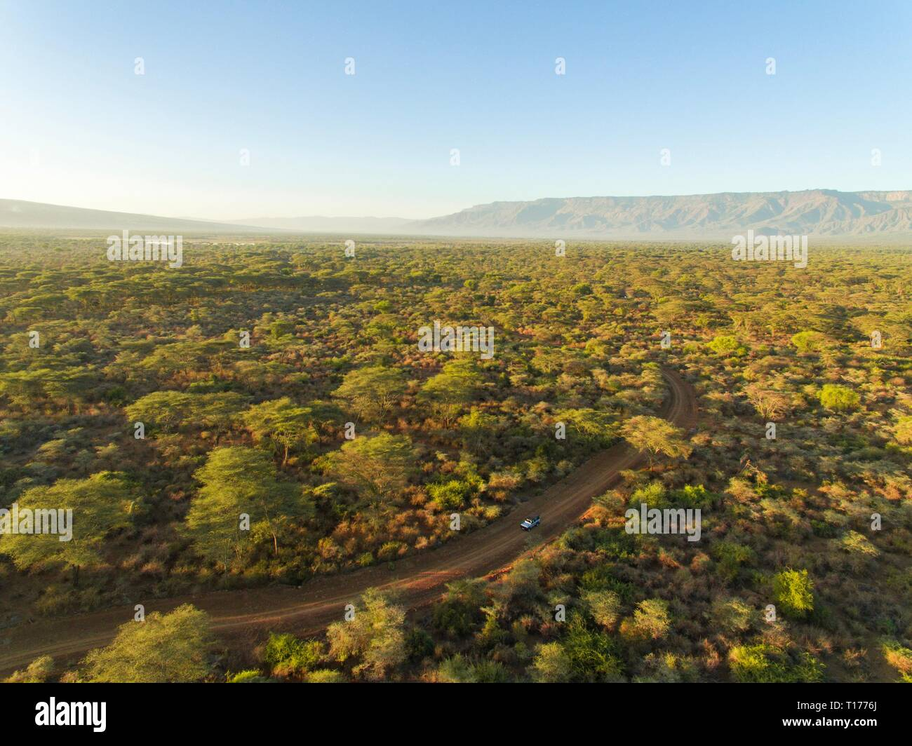 Early morning game drive in Rimoi National Reserve - Stock Image