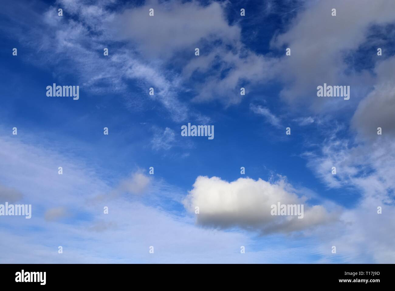 Beautiful white fluffy clouds on a deep blue sky - Stock Image