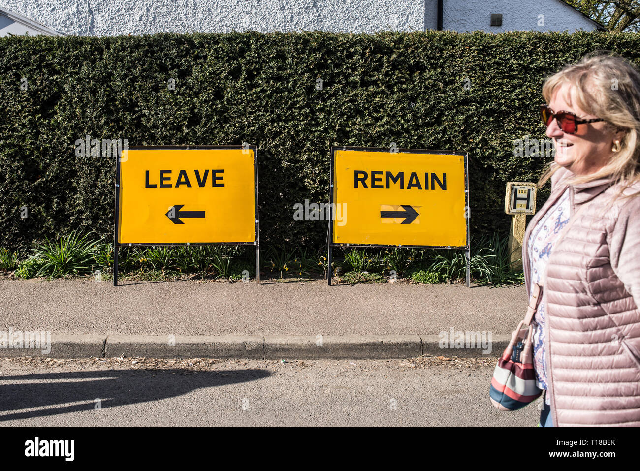 Funny Jokes About Brexit Two Satiric Comic Road Signs With The