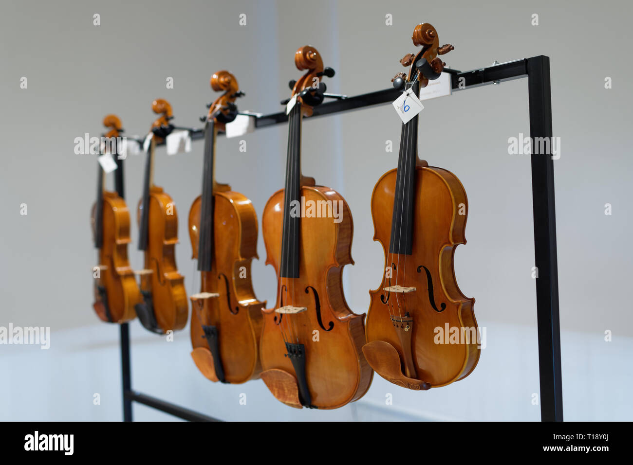 Musical Instruments Violins Stock Photos & Musical