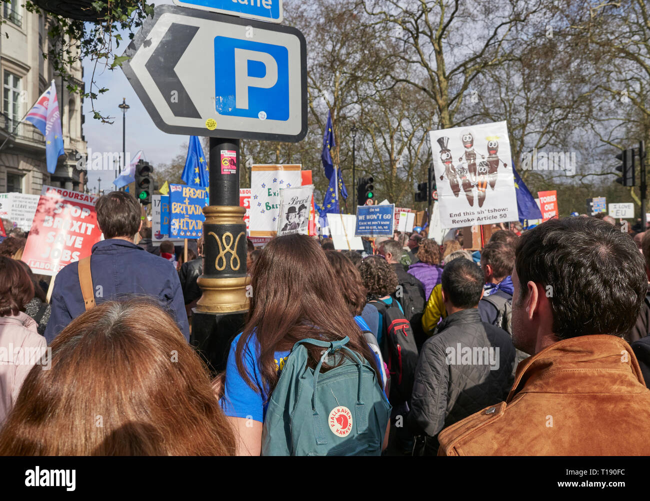 London, England, UK. 23rd March 2019, Anti Brexit Protestors on the Peoples March in London UK. Credit J Walters/Alamy Live News - Stock Image