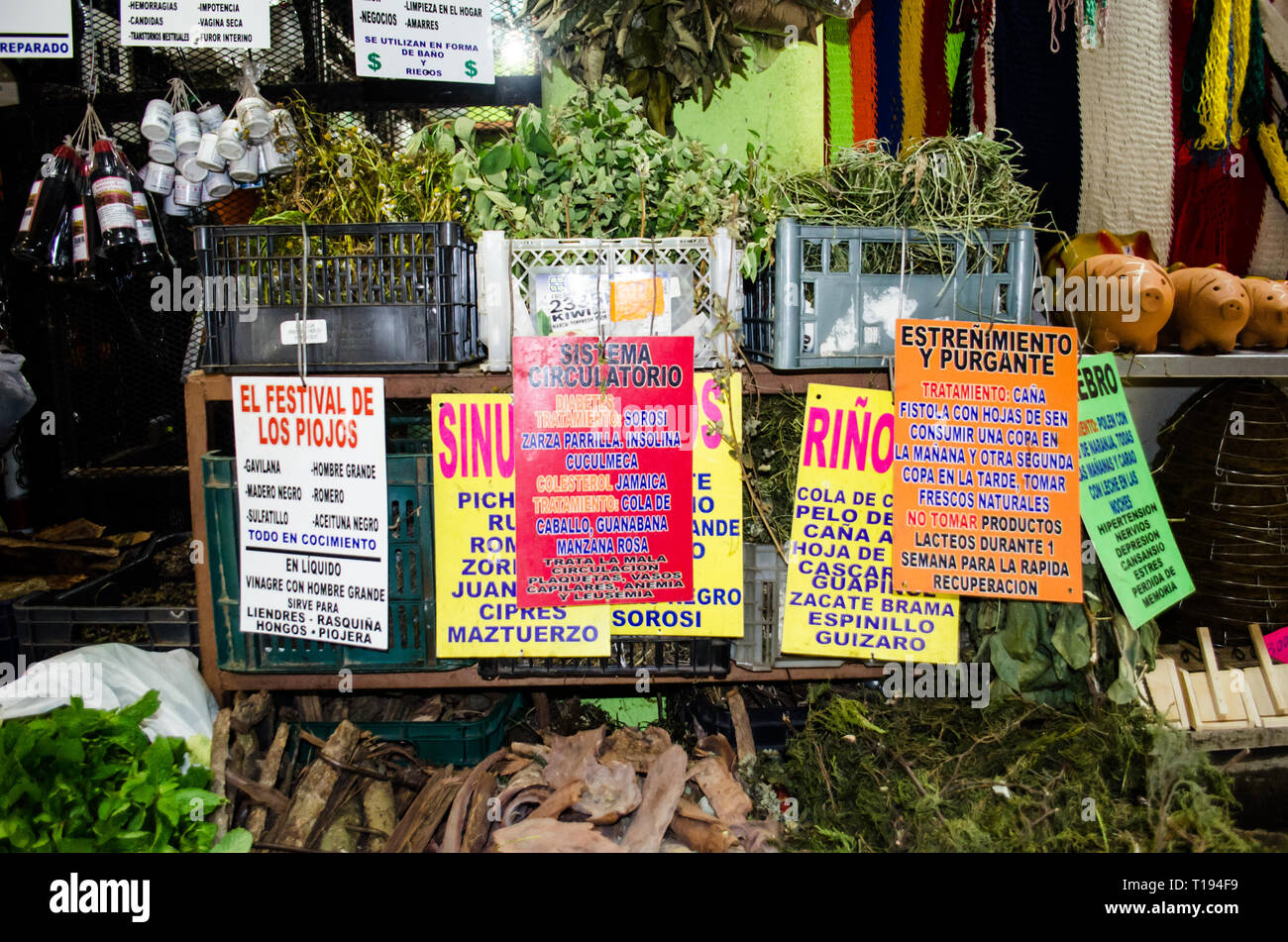 Stall of herbs for sale at Costa Rica's Central Market - Stock Image
