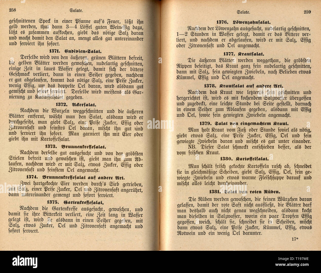 """household, cooking and baking, cookbook, """"Die Woerishofer Kueche"""" (The Woerishofen Diet), by Agathe Haggenmiller, paragraph on salads, Woerishofen, 1897, Additional-Rights-Clearance-Info-Not-Available Stock Photo"""