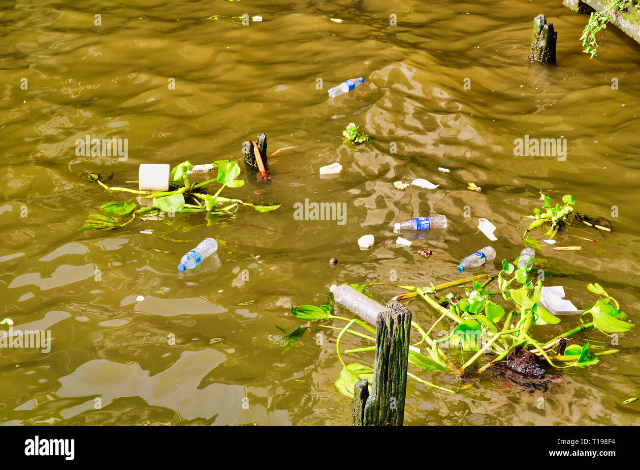 This unique photo shows how the water is polluted with plastic garbage in the bangkok river Mae Nam Chao Phraya - Stock Image