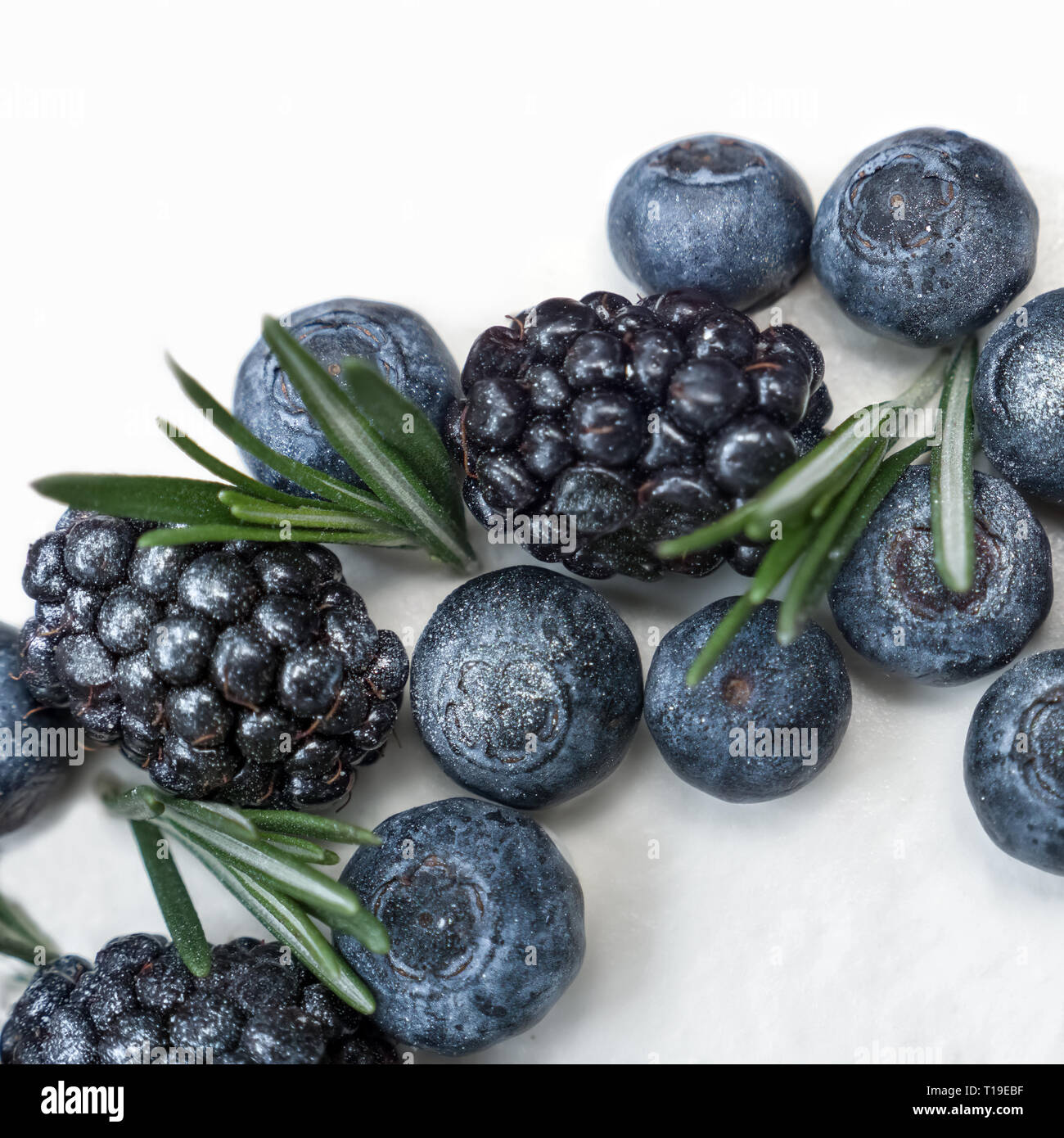 Cake with blueberry, blackbarry and rosemary. Decorating cakes. Baking, sweets, confection, lollipops, cream. Healthy food concept. - Stock Image
