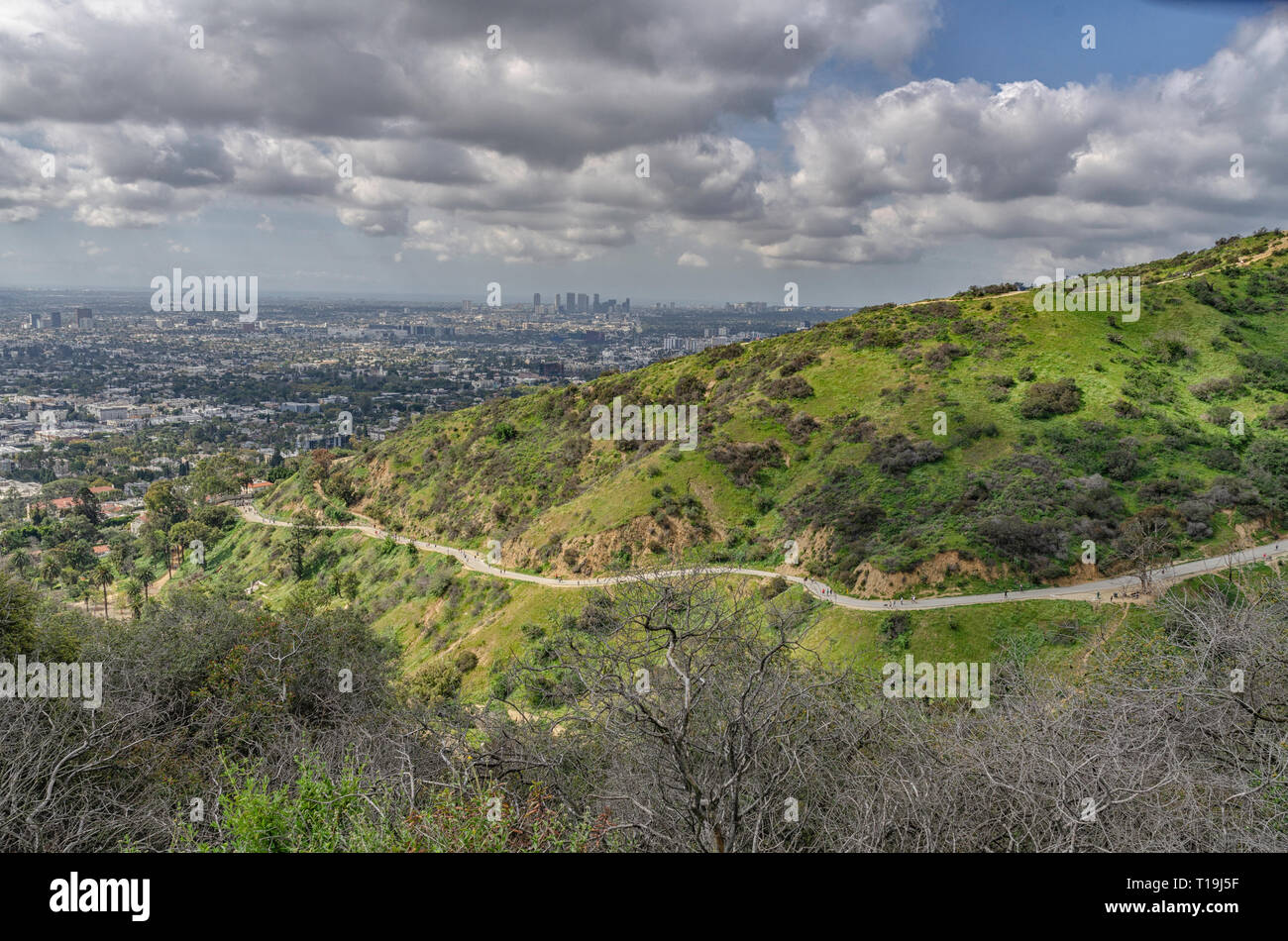 Hiking trails in Runyon Canyon, Los Angeles, CA. - Stock Image