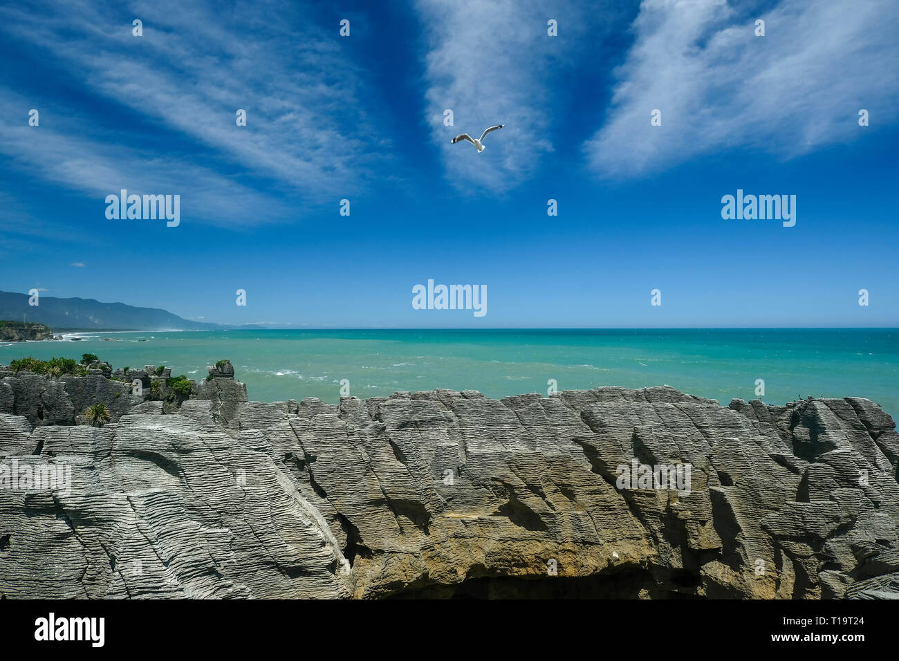 The remarkable westcoast and its Pancake Rocks. Formed by eternity of waves and once will be washed away by the ocean. Superb scenery in New Zealand. - Stock Image