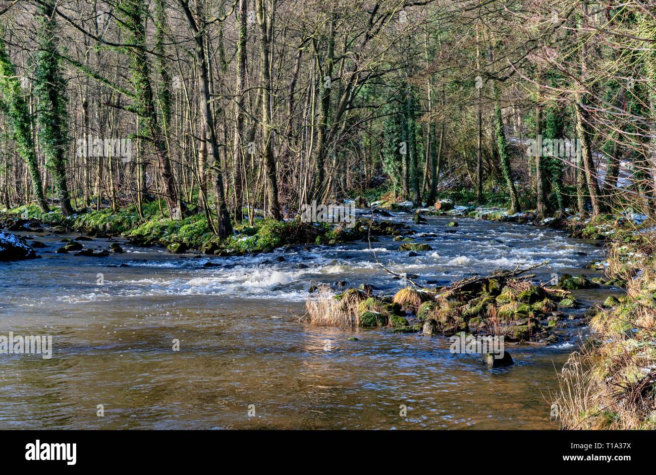 The river Esk at Egton Bridge - Stock Image