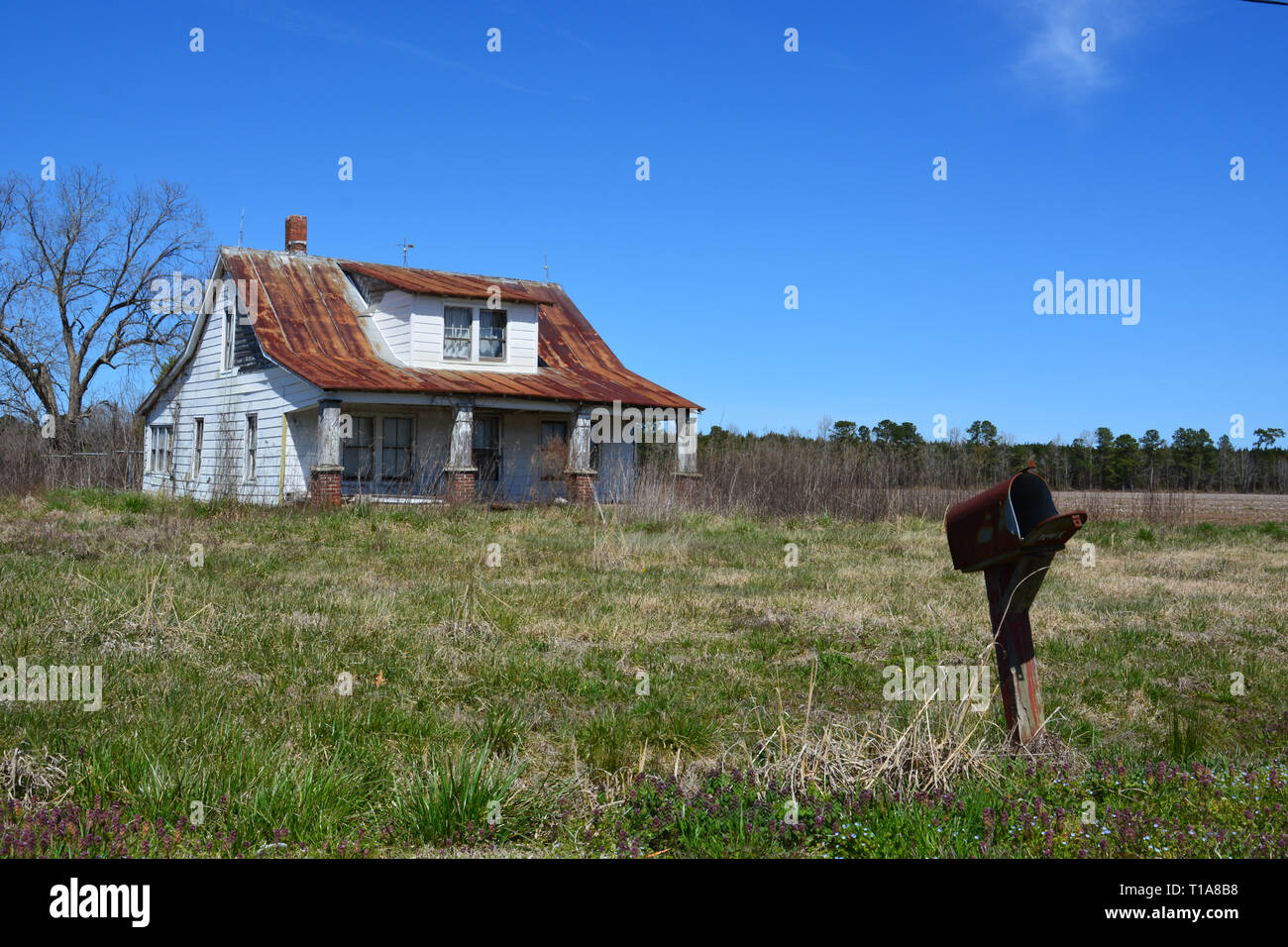 An abandoned home slowly rots on the back roads of Perquiman's County in eastern North Carolina. - Stock Image
