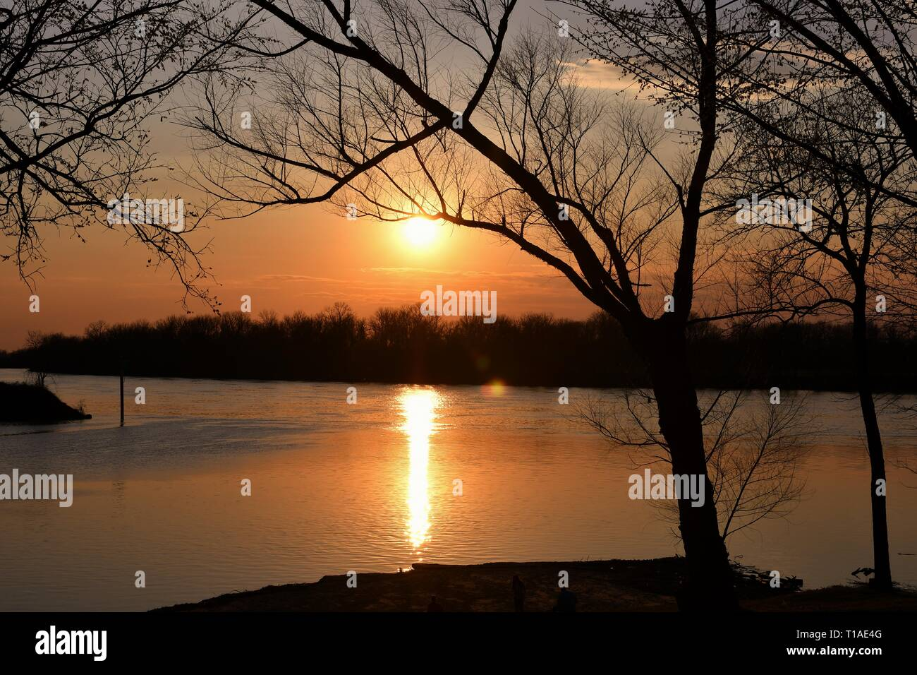 Sunset with silhouette trees from Fort Smith, AR looking over the Arkansas River into Oklahoma Stock Photo