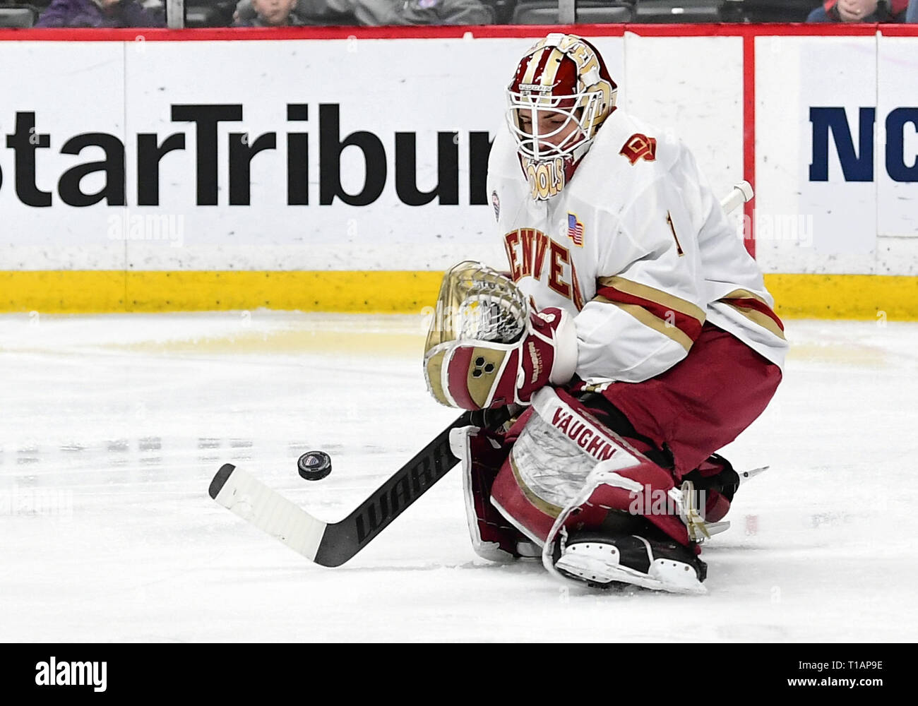 March 23, 2019 Denver Pioneers goaltender Devin Cooley (1) makes a save during the NCHC Frozen Faceoff third place game between the Colorado College Tigers and the Denver Pioneers at the Xcel Energy Center, St. Paul, MN. Denver defeated Colorado College 6-1. Photo by Russell Hons/CSM - Stock Image