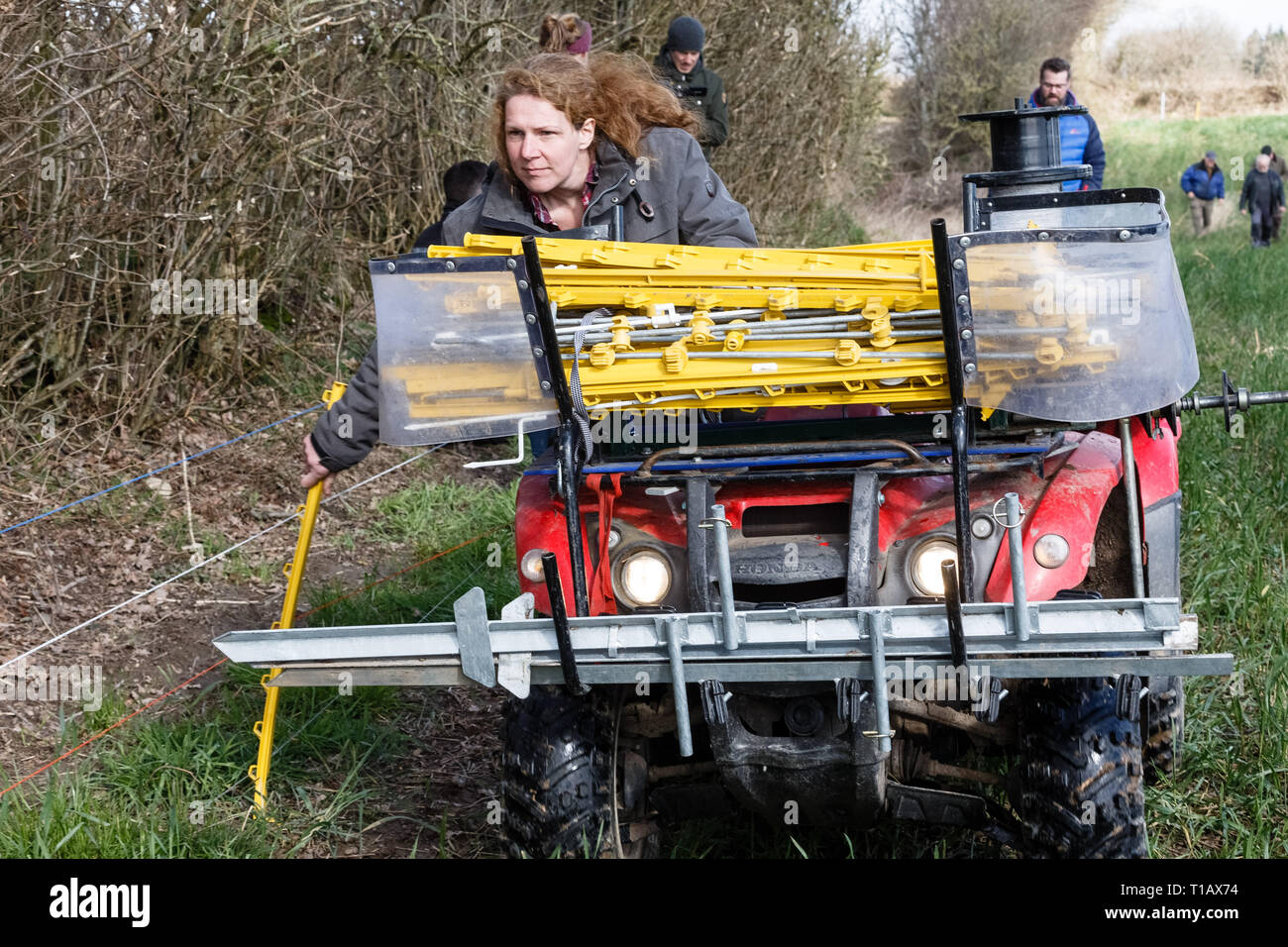 25 March 2019, Schleswig-Holstein, Fahrdorf: Shepherd Uta Wree dismantles an electric fence with her mobile winding system, which is now being tested for wolf defence. Photo: Markus Scholz/dpa - Stock Image