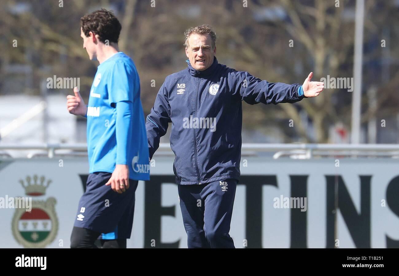 firo: 25.03.2019, Football, 2018/2019, 1.Bundesliga: FC Schalke 04 - Training gesture, Mike Buskens with Sebastian Rudy   usage worldwide - Stock Image