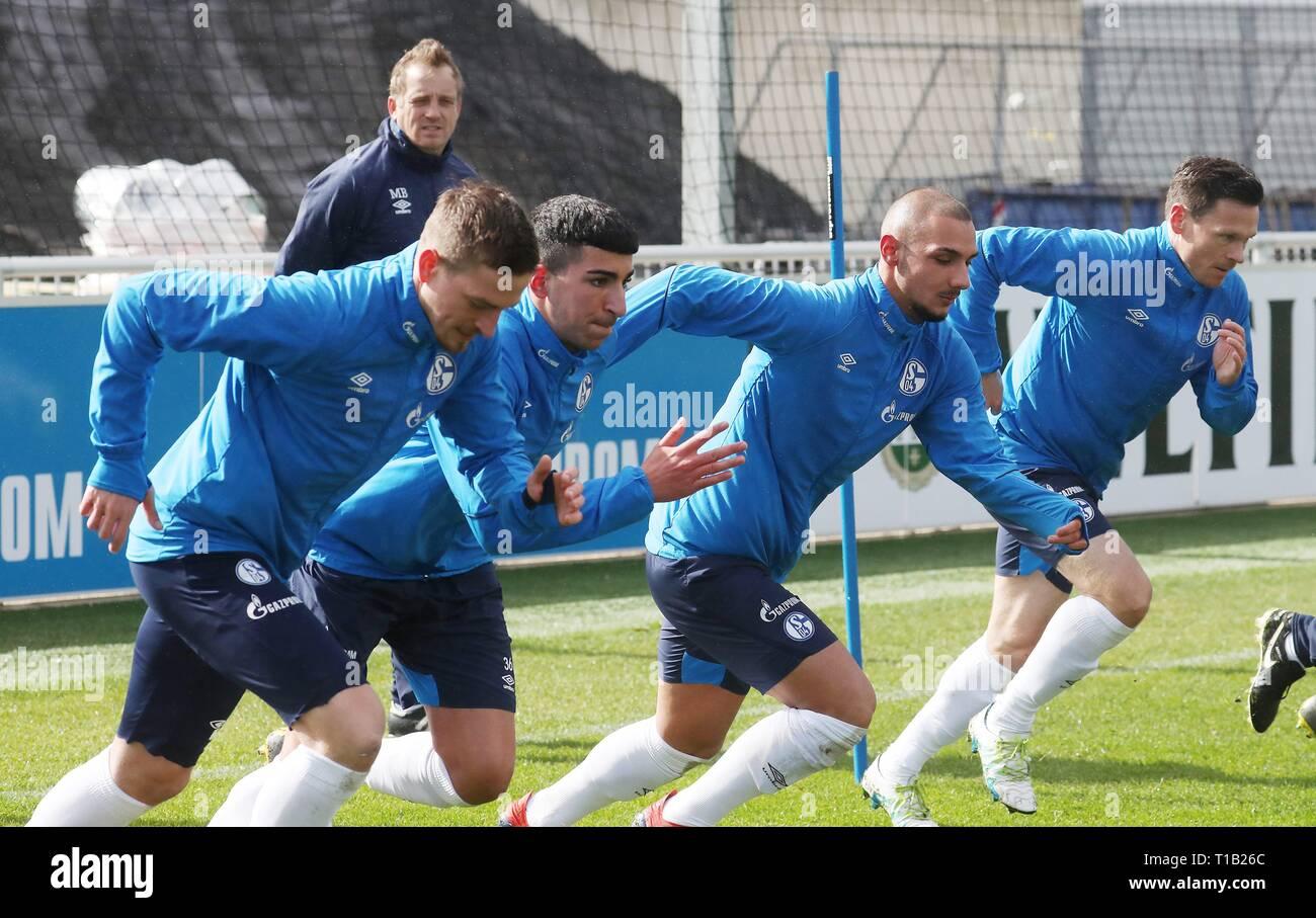 firo: 25.03.2019, Football, 2018/2019, 1.Bundesliga: FC Schalke 04 - Training Mike Buskens watches sprint training by Ahmed Kutucu   usage worldwide - Stock Image