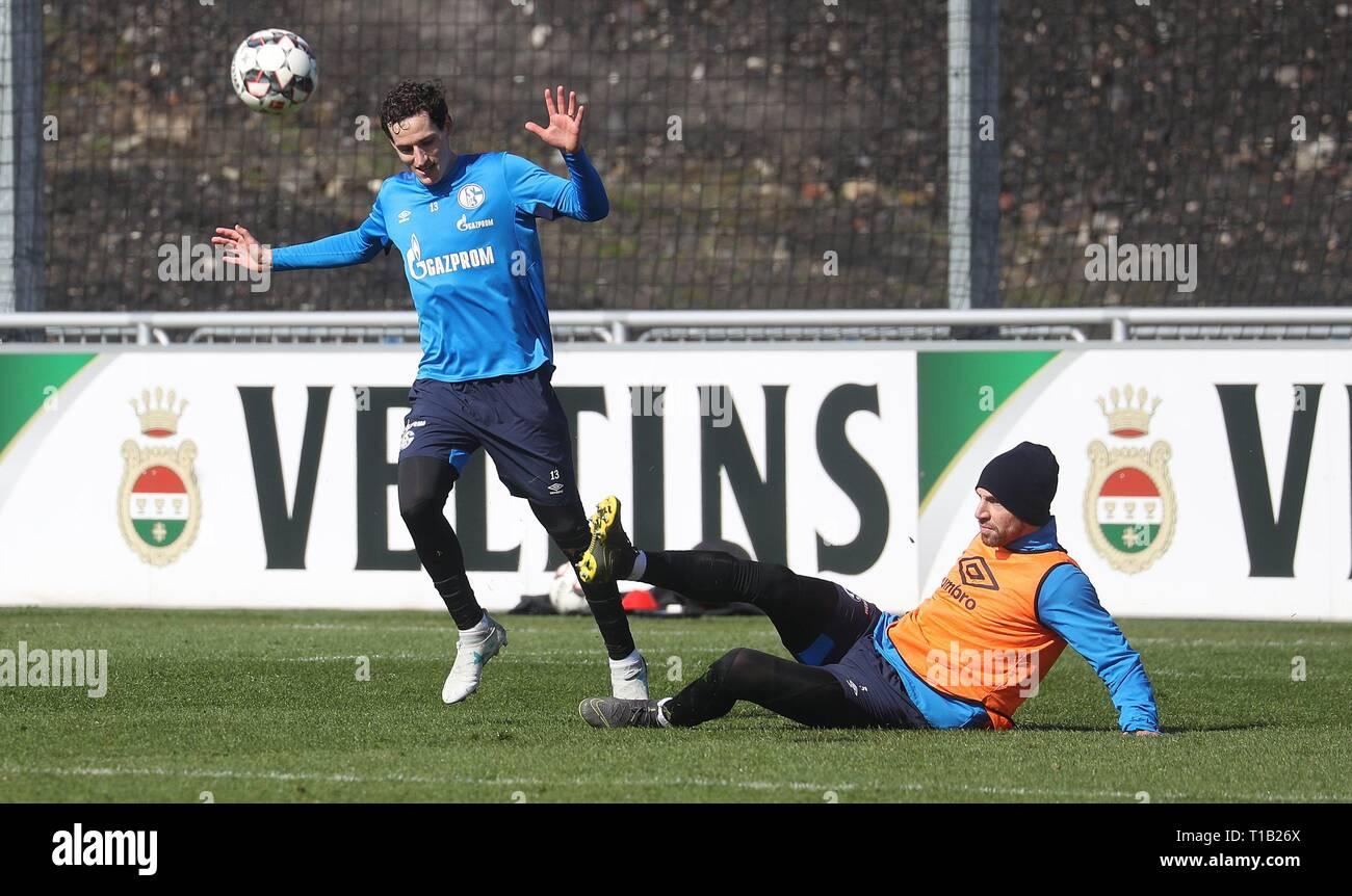 firo: 25.03.2019, Football, 2018/2019, 1.Bundesliga: FC Schalke 04 - Training duels Sebastian Rudy versus Nastasic   usage worldwide - Stock Image
