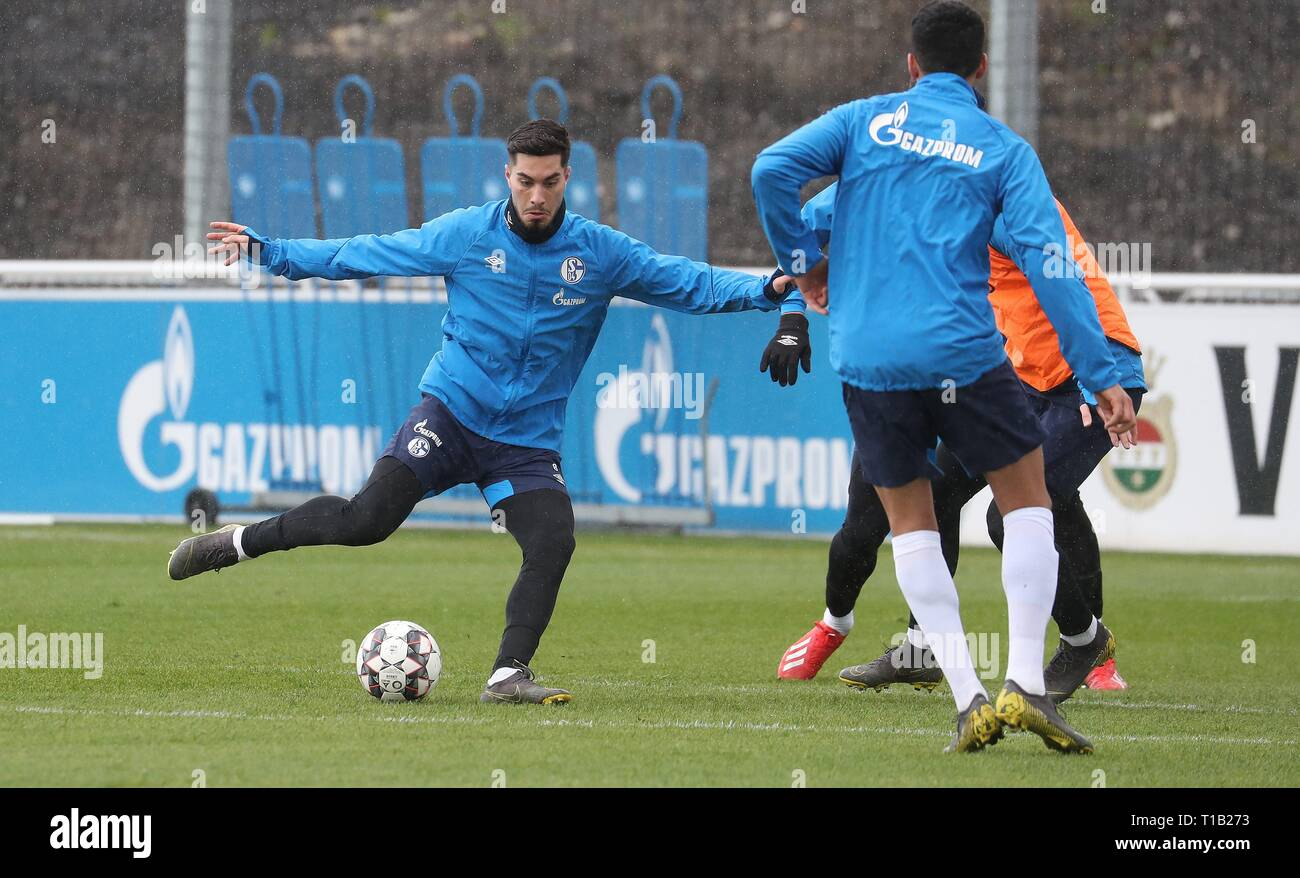 firo: 25.03.2019, Football, 2018/2019, 1.Bundesliga: FC Schalke 04 - Training Suat Serdar | usage worldwide - Stock Image