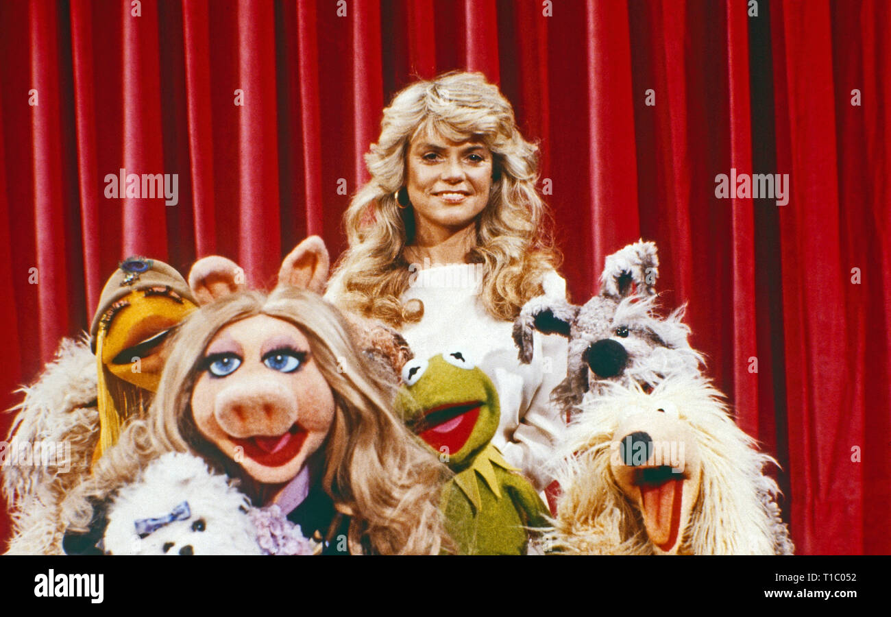 Janice Muppet Stock Photos & Janice Muppet Stock Images - Alamy