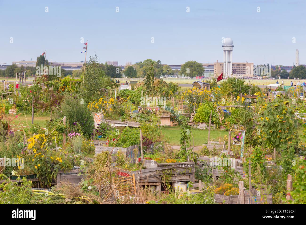 Urban gardening at Tempelhofer field, former airport in Berlin, Germany. - Stock Image