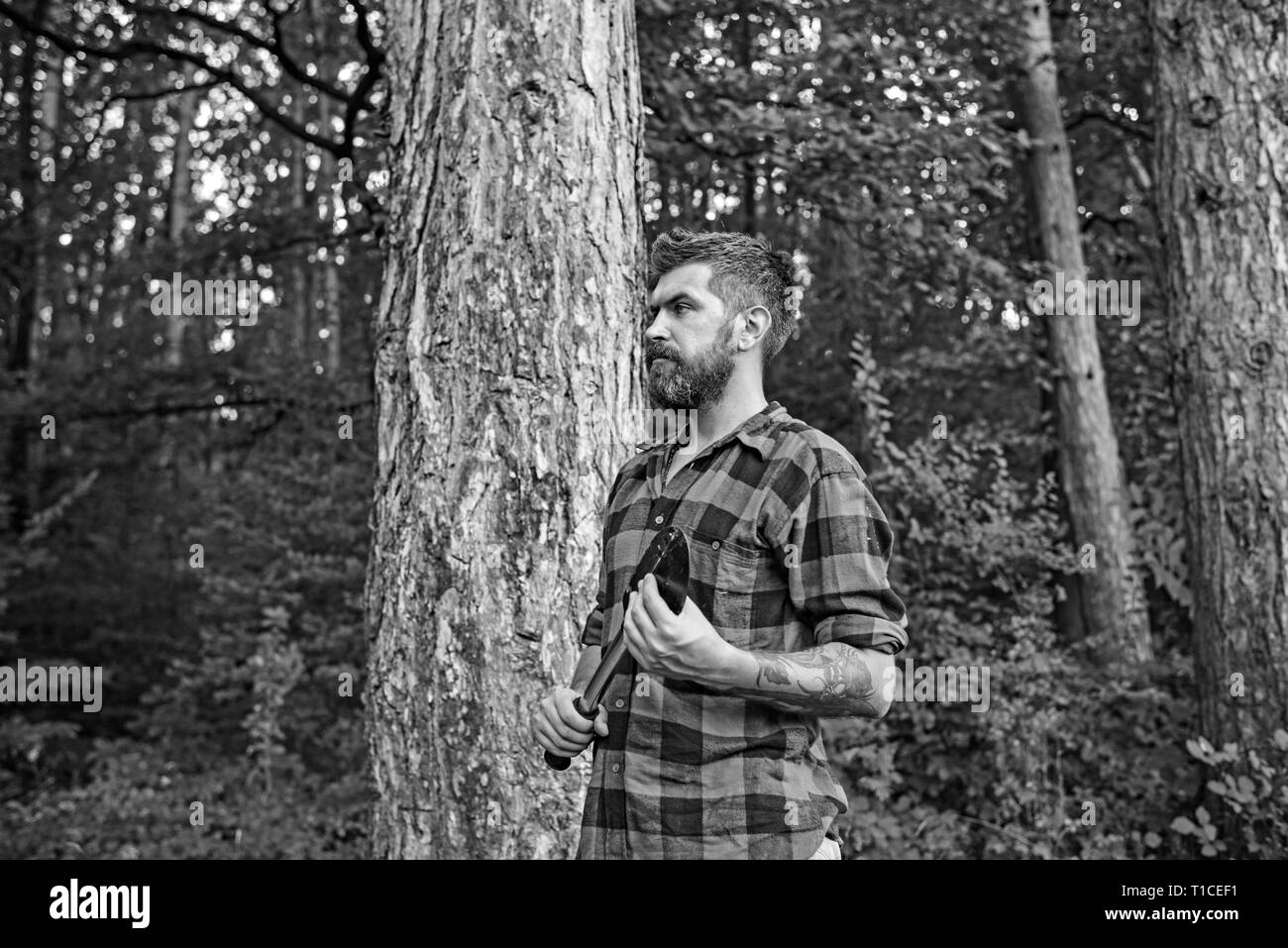 Bearded guy with spade wandering in woods. Side view brutal lumberjack waiting on path. Nature, camping, leisure concept - Stock Image