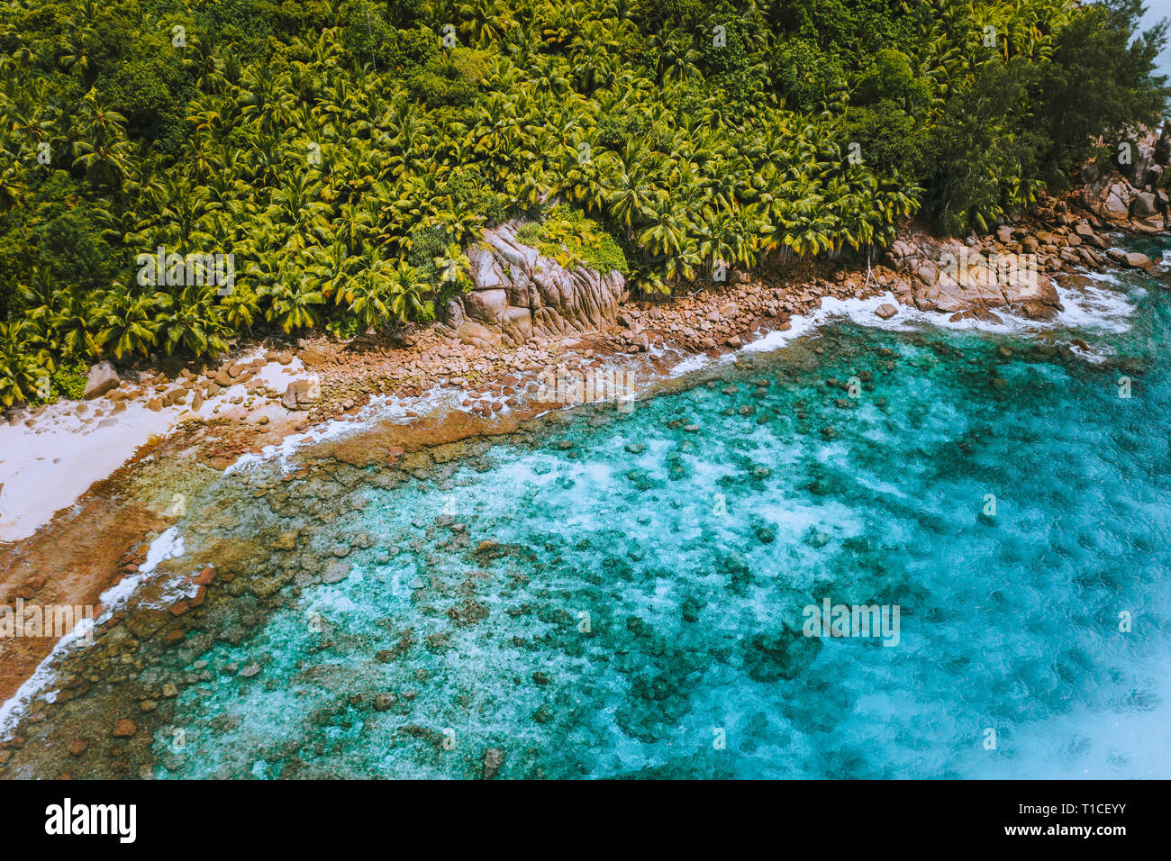 Aerial drone shot of palm grove and transparent blue water on Seychelles tropical beach, La Digue island - Stock Image