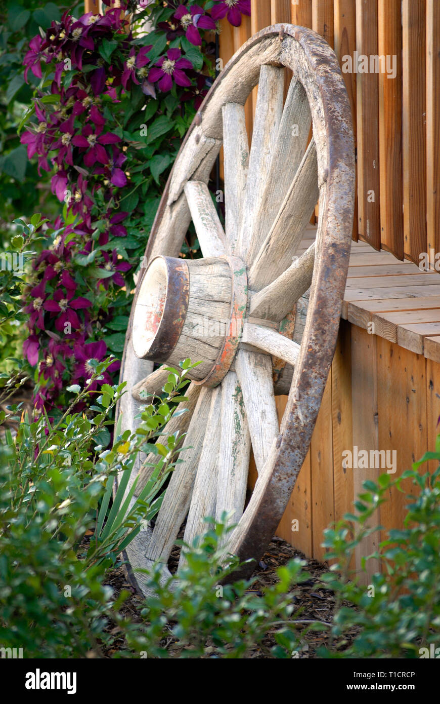 Merveilleux Old Wagon Wheel Against Fence In Flower Garden For ...