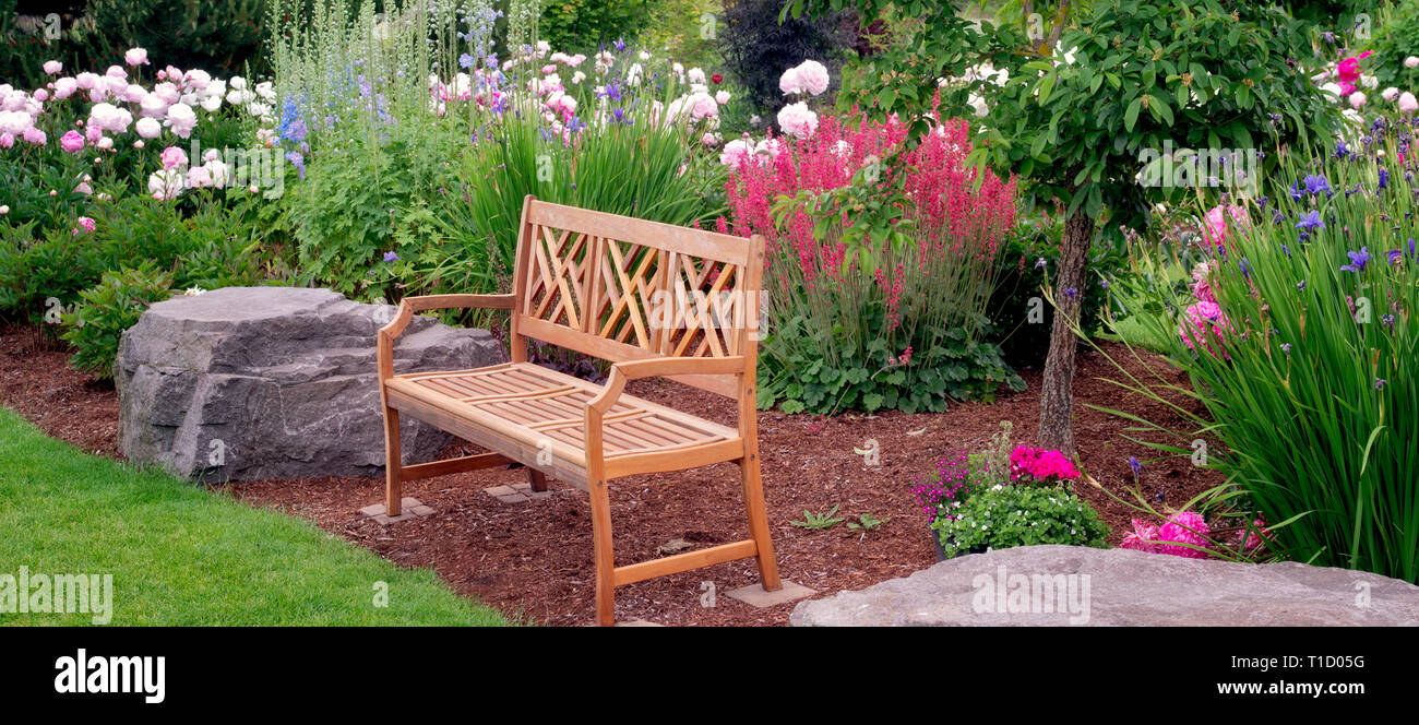 Peony garden and bench. Adleman Peony Garden, Salem, Oregon - Stock Image