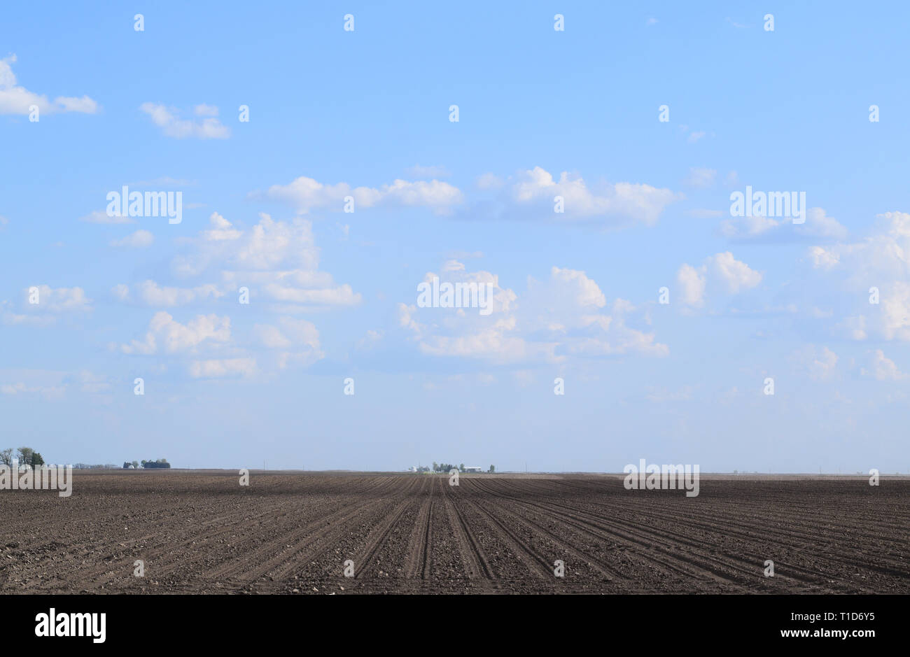 Large clouds in blue sky over empty farmland in spring time in East Central Illinois farm country - Stock Image