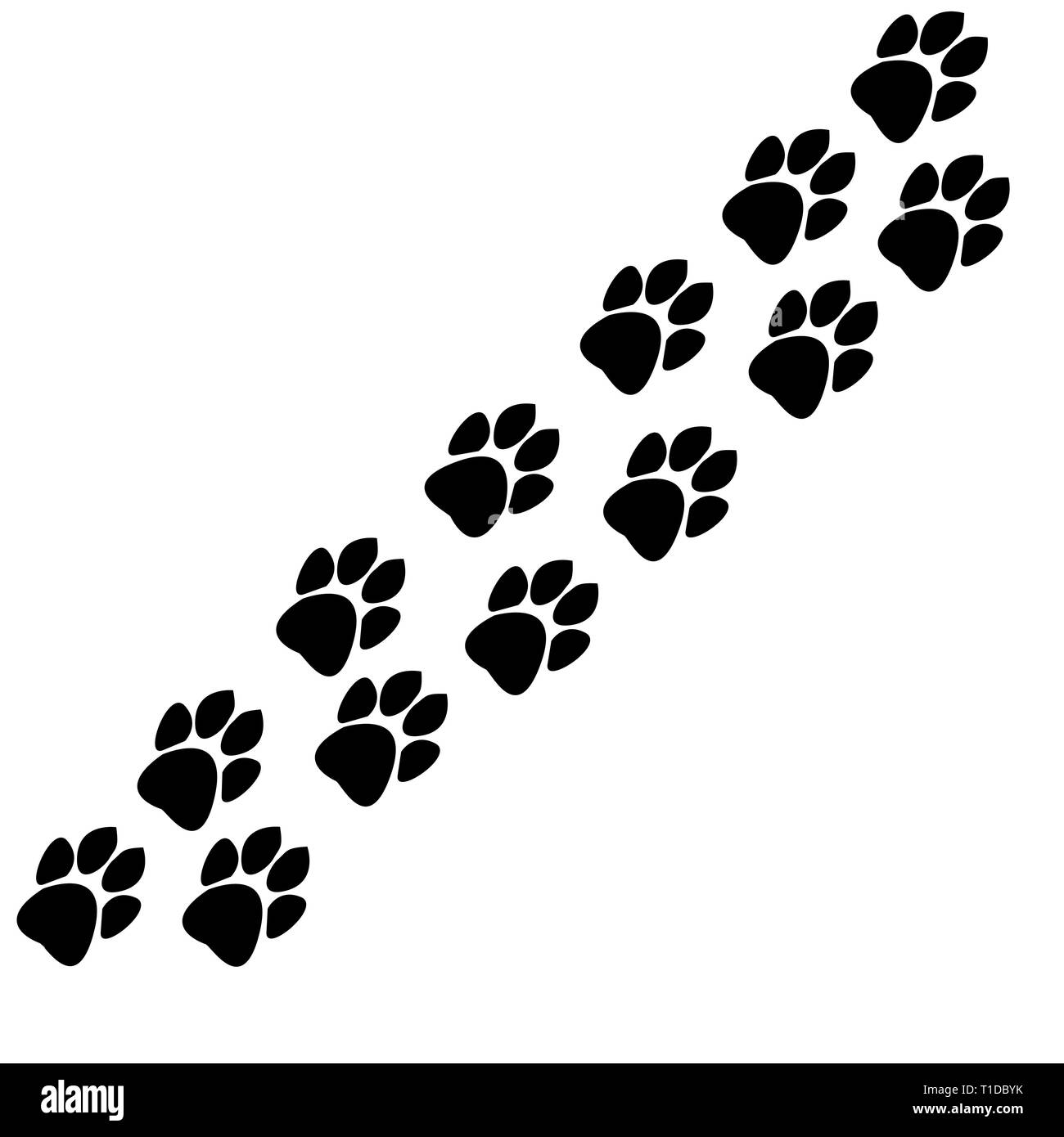 traces of animals track - Stock Vector