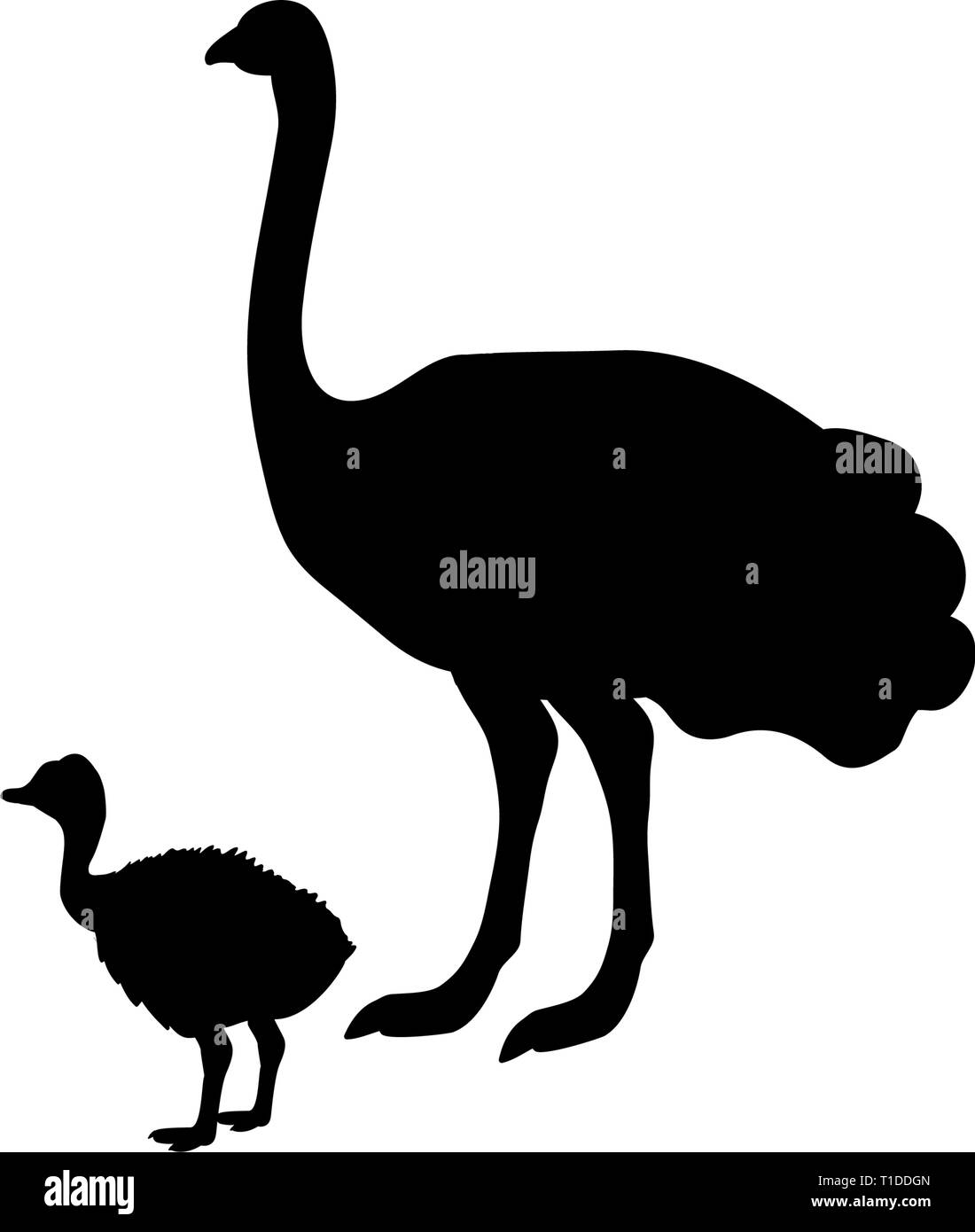 Ostrich bird  black silhouette animal - Stock Vector