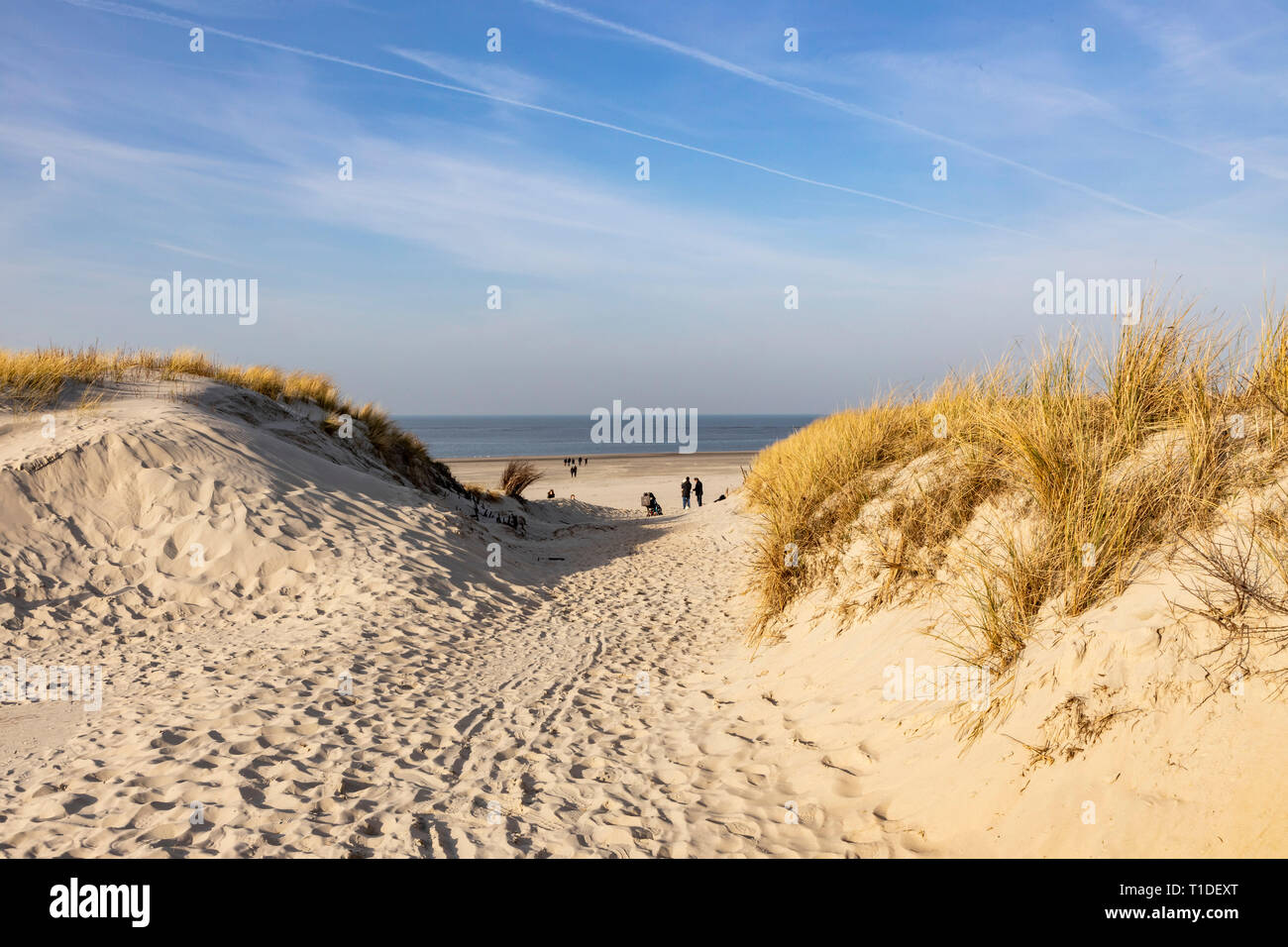 North Sea island Langeoog, Ostfriesland, Lower Saxony, beach crossing, beach path, Stock Photo