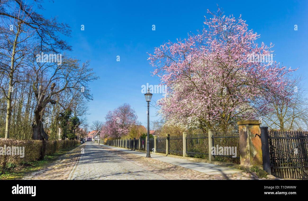Old cobblestoned road with spring blossom in Rheda, Germany - Stock Image