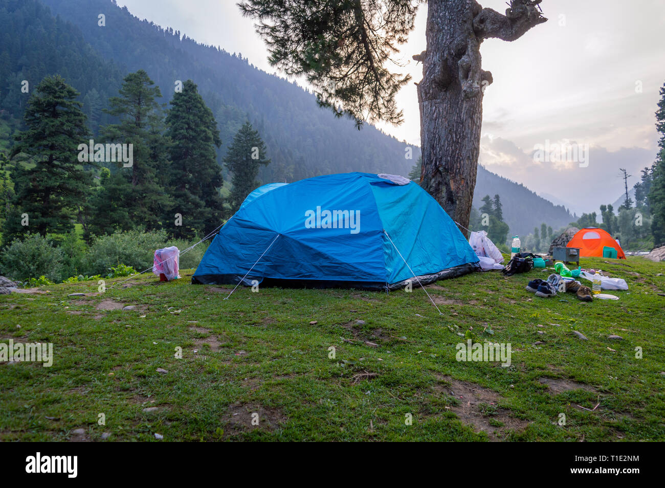 Tents set up for camping in the Himalayan region of Kashmir - Stock Image
