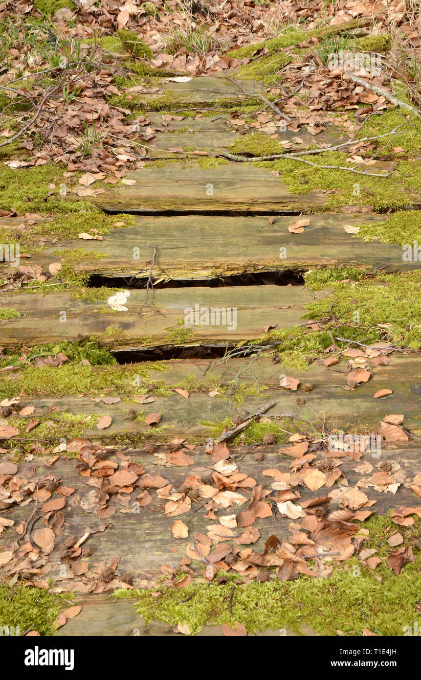 Fragile rotten bridge over a ditch. - Stock Image