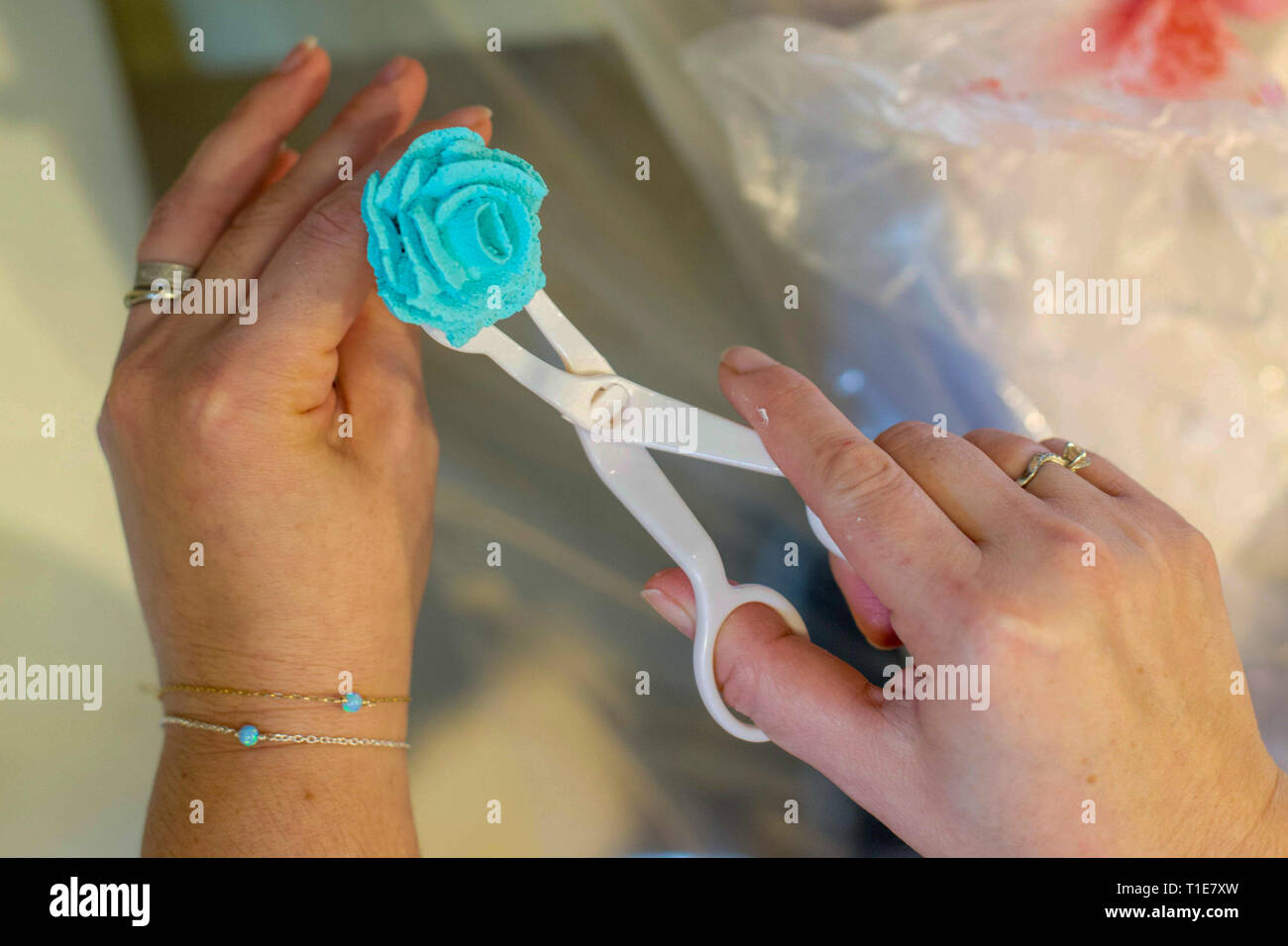 Decorating a birthday cake with blue icing sugar flowers - Stock Image