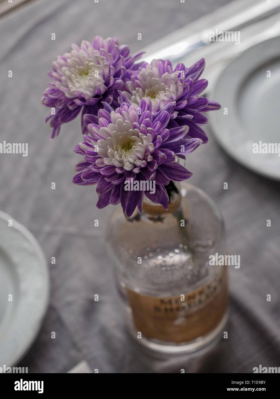 Dried flower potpourri - Stock Image