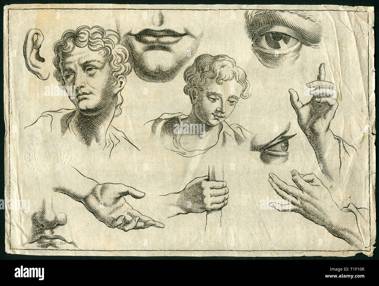 Historical drawing of parts of the body, head, eye, mouth, chin and hand, copperplate engraving from about 1700., Artist's Copyright has not to be cleared - Stock Image