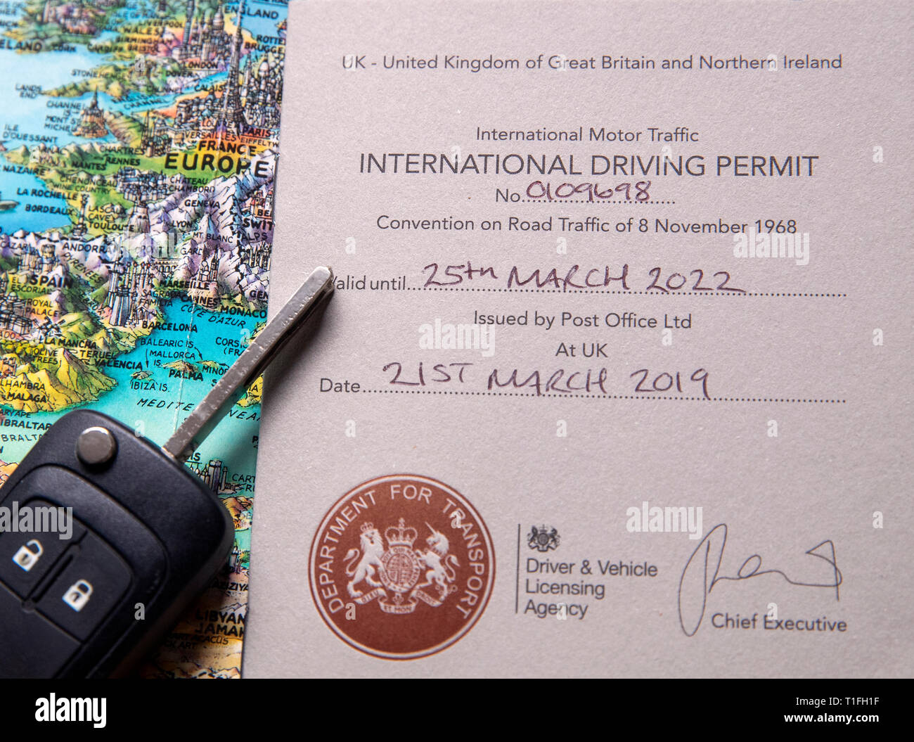ama international drivers license